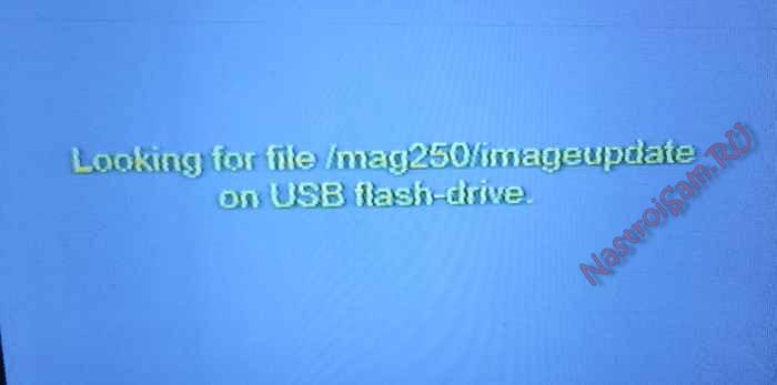 looking-file