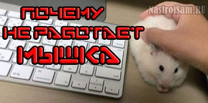 не работает мышка на компьютере