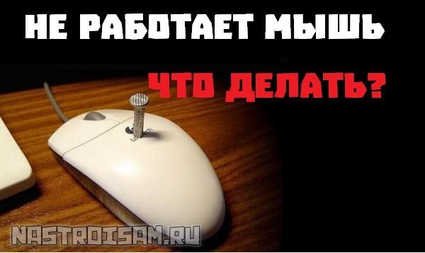не работает мышь на ноутбуке